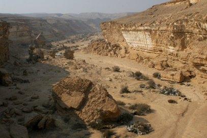 Wadi Degla WS