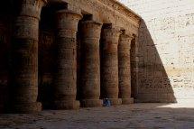 Habu Columns