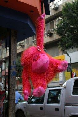 hanging pink orangutan
