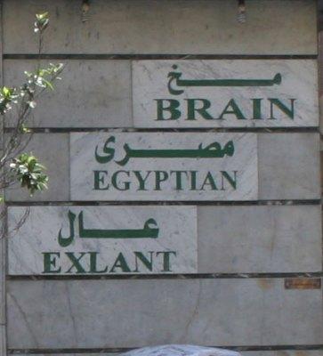 Brain CU
