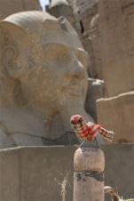 Ian Luxor 2
