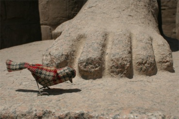 Ian Luxor 8