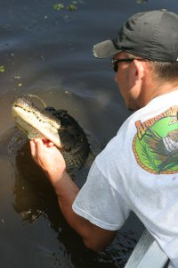 Captain Kevin and a gator